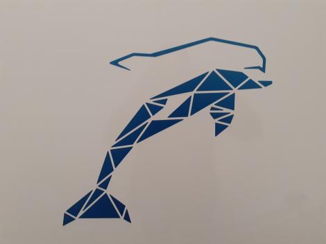 Delfin T 732